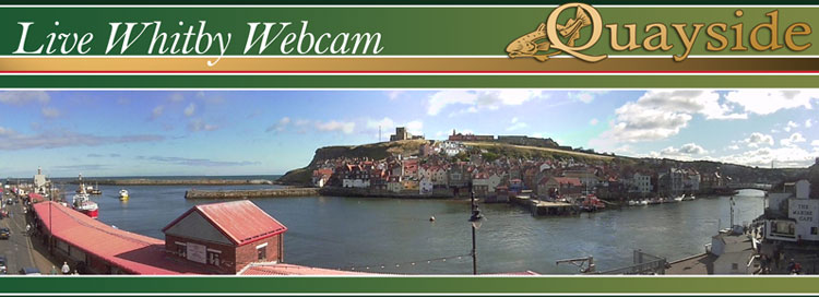 whitby webcam